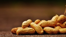 pinda's, ketting, geloof, Jeremia, profeteren, pindaketting