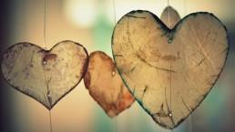 hart, geloof, delen, 40-dagen