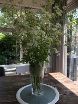 bloemen, lume, moeder, moederdag