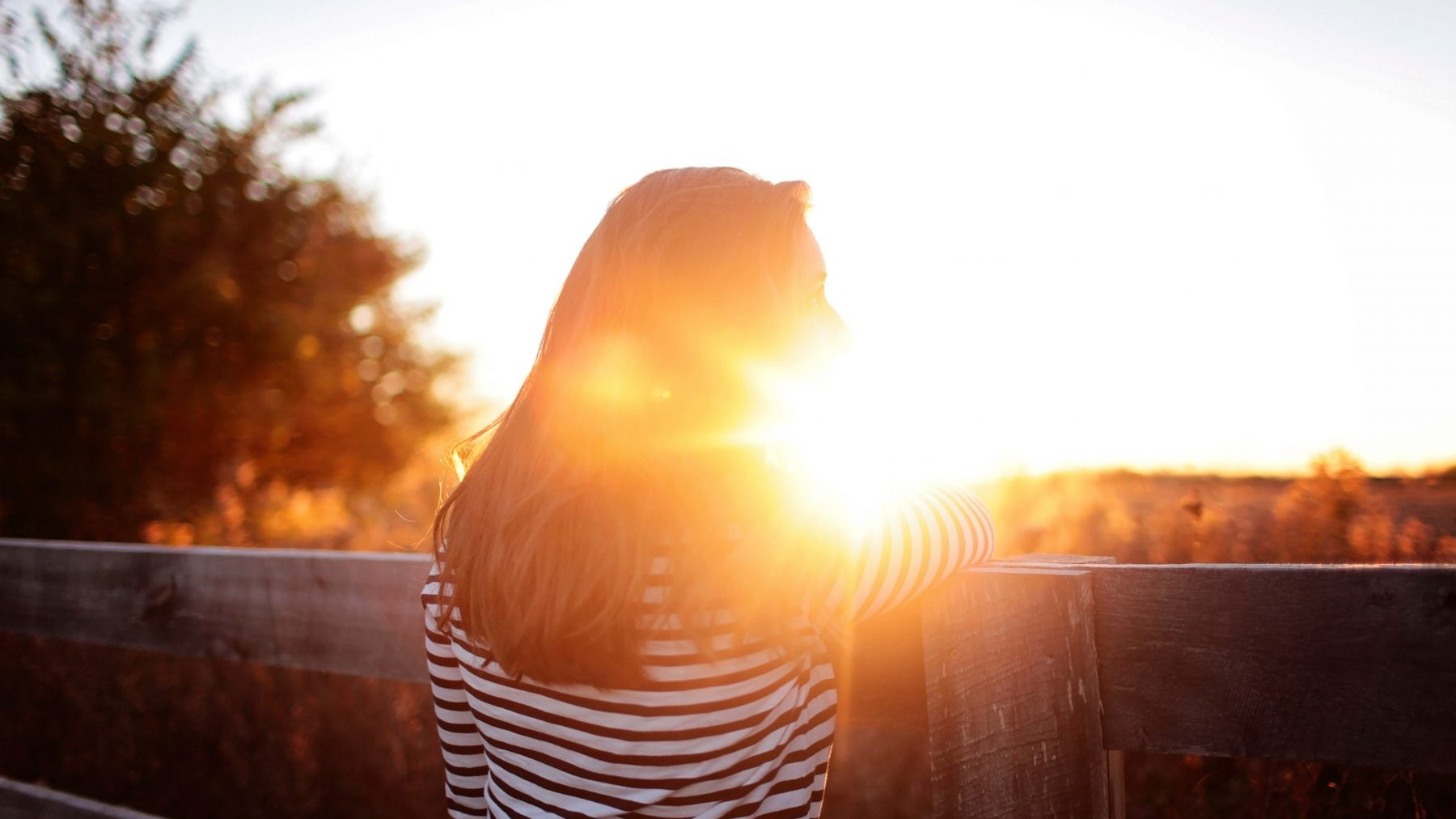 zon, licht