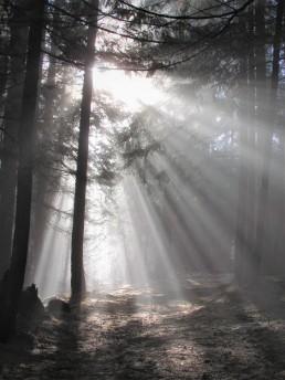 light, sun, lume, licht, geloof
