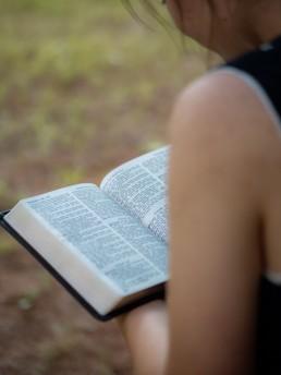 Job, Bible, Woman, Lume