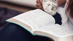 bijbel, jaar, getuigen, lume, vrouw